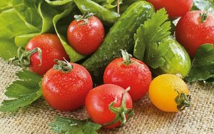 Gemüse einschließlich Salate